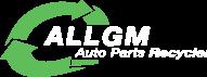 All GM Auto Parts